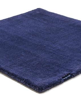 3653 blue iris